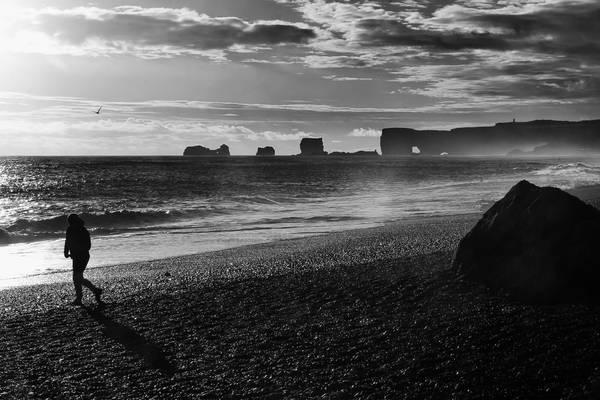Iceland 2017 - Dyrhólaey