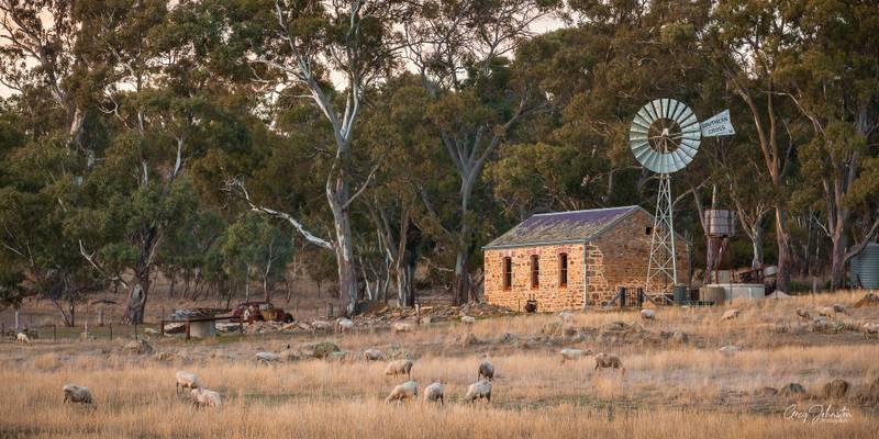 Pioneer cottage