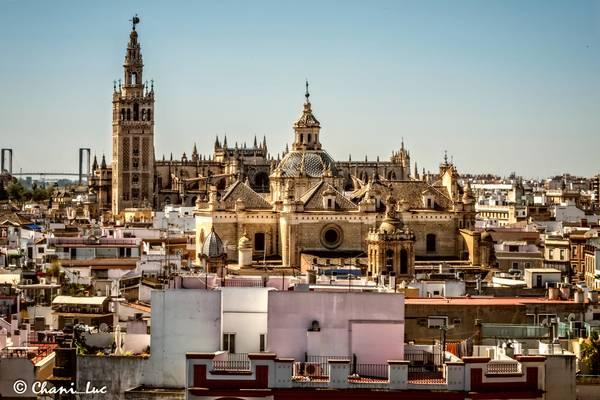Vista catedral y giralda...