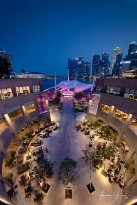 Esplanade And Theatre View