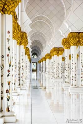 Sheikh Zayed mosque in Abu Dhabi (explored)