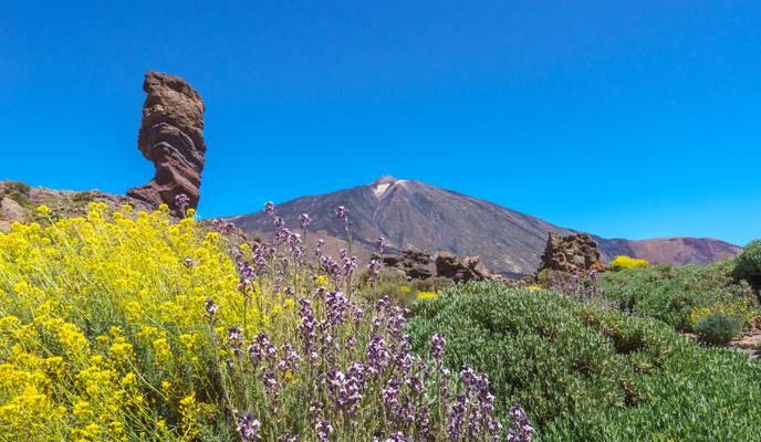 El Roque Cinchado below Teide
