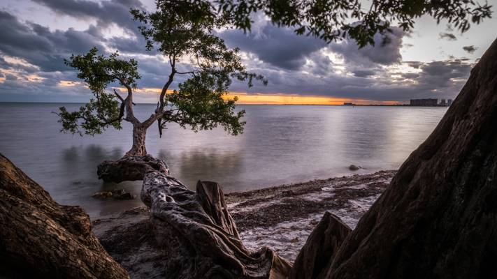 Sunset in Key Biscayne - Miami, Florida - Travel photography